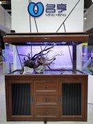 名亨水族说鱼缸中的氨氮和亚硝酸盐的危害究竟有多大