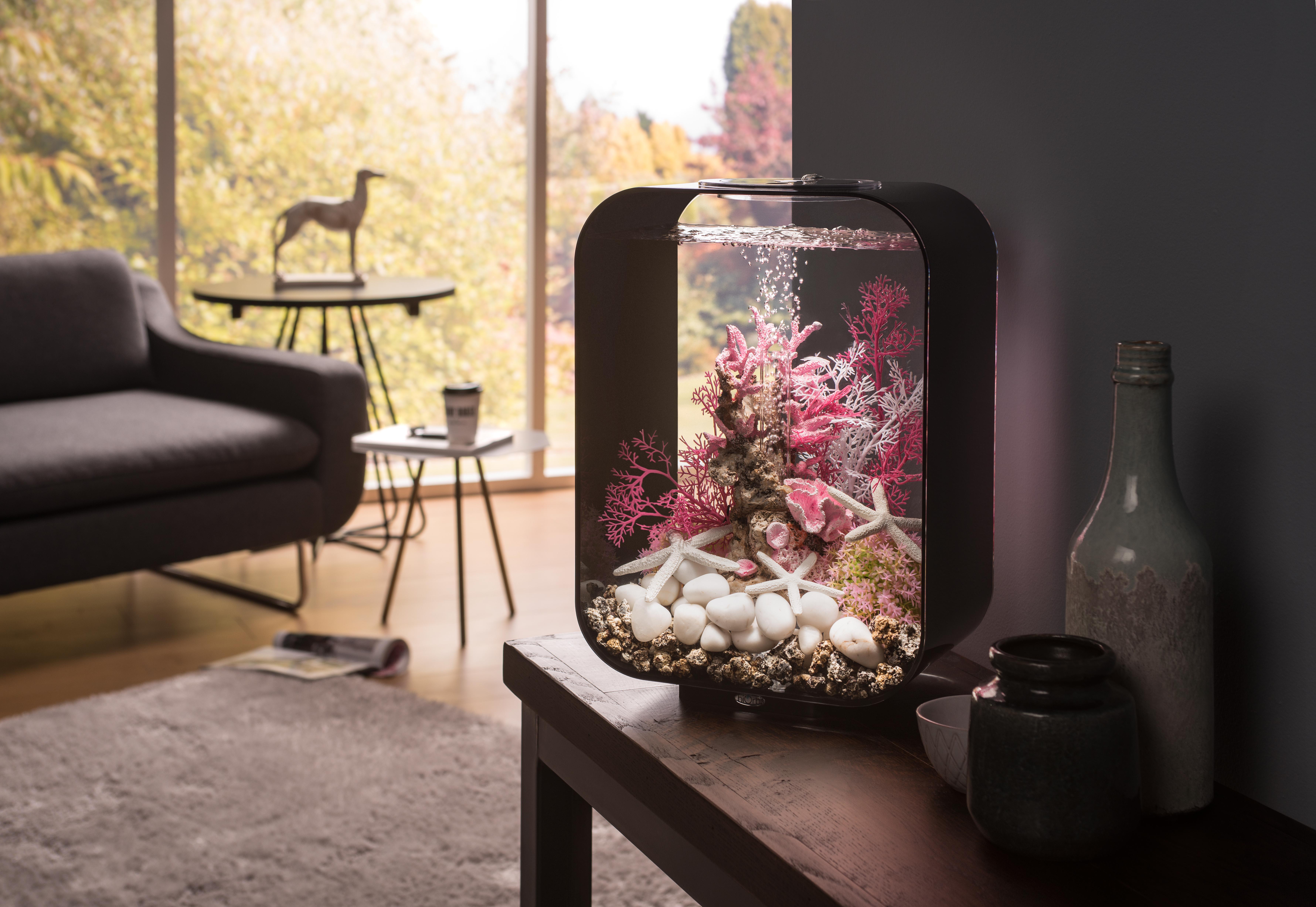biorb鱼缸为什么那么贵 英国原装进口碧欧宝鱼缸好吗